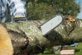 The lumberjack cuts the timber by the chainsaw — Stock Photo