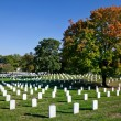 WASHINGTON DC - OCT 16: Rows and columns of US soldier's tombsto — Photo