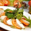 Mozzarella dish — Stock Photo