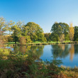 Pond surrounded the trees and meadows — Stock Photo #37923433