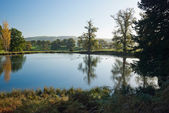 Pond surrounded the trees and meadows — Stock Photo