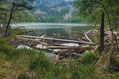 Glacial Devils Lake surrounded by the forest — Stock Photo