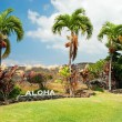 Aloha sign with palm trees on Big Island Hawaii — Stock Photo