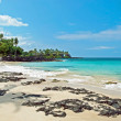 White sand beach on Hawaii Big Island with azure ocean in backgr — Stock Photo