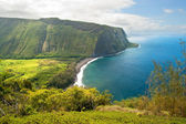 Waipio valley lookout on Hawaii Big Island — Stock Photo