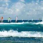 Windsurfers in windy weather on Maui Island — Stock Photo