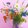 Wild flowers on a pink background — Stock Photo