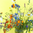Wild flowers on a yellow background — Stock Photo #13689664