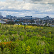 Stock Photo: View of Moscow from high after rain