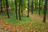 Autumn in Tsaritsyno Park in Moscow — Stock Photo