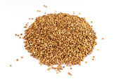 Buckwheat groats on a white background — Stock Photo