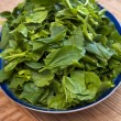 Chopped fresh spinach — Stock Photo