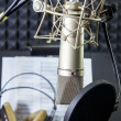 Stock Photo: Condenser microphone in vocal recording room