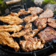 Steak and chicken meat grilled on barbecue  — Photo