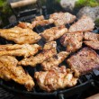 Steak and chicken meat grilled on barbecue  — Foto Stock