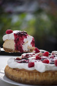 Raspberry cheese cake — Stock Photo