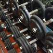 Dumbbells - apparatuses of athletes — Stok fotoğraf