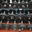 Dumbbells - apparatuses of athletes — Stockfoto