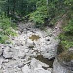 Wild mountain river — Stock Photo #33063089