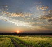 Coucher de soleil au-dessus de champ — Photo