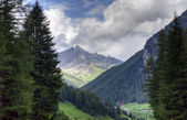 South Tyrol 0138 — Stock Photo