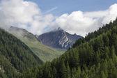 South Tyrol 0194 — Stock Photo