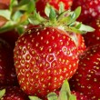 Strawberry 3 — Stock Photo
