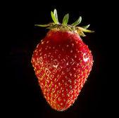 Strawberry 2 — Stock Photo