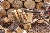 Chopping Wood 03 — Stock Photo