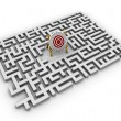 Labyrinth - target — Stock Photo