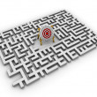 Labyrinth - target - Stock Photo