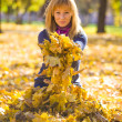 Beauty during autumn — Stock Photo #33368737