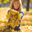 Beauty during autumn — Stock Photo #33368739