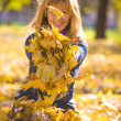 Beauty during autumn — Stock Photo #33368741