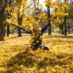 Beauty during autumn — Stock Photo #33375233