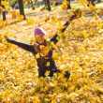 Beauty during autumn — Stock Photo #33375535