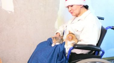 Senior woman with cats in santa hat sitting in wheelchair — Stock Video