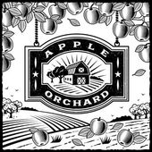 Apple orchard blanco y negro — Vector de stock