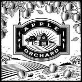 Apple orchard blanco y negro — Vector de stock