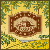 Retro Olive Grove — Stock Vector