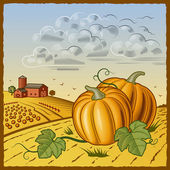 Landscape with pumpkins — Stock Vector