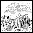 Stock Vector: Landscape with pumpkins black and white