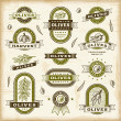 Vintage olive labels set - Stockvektor