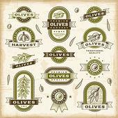 Conjunto de rótulos de azeitona vintage — Vetorial Stock
