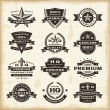 Vintage premium quality labels set — Stockvectorbeeld