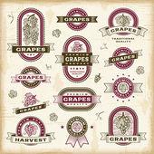 Conjunto de rótulos de uvas vintage — Vetorial Stock