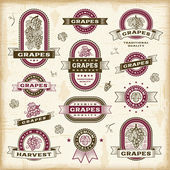 Vintage grapes labels set — Stock Vector