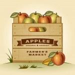 Retro crate of apples — Stock Vector