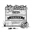 Retro crate of grapes black and white — Stock Vector