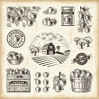 Vintage apple harvest set — Vector de stock #34489289